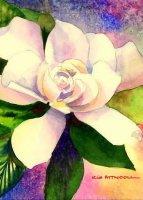 gardenia, best inkjet printer
