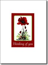 Poppy in Red Thinking of You image