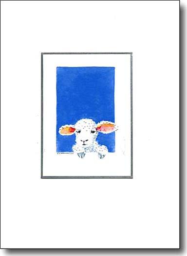 baby lamb image