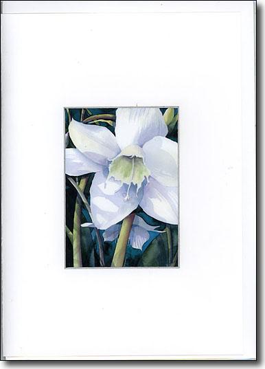 Eucharist Lily image