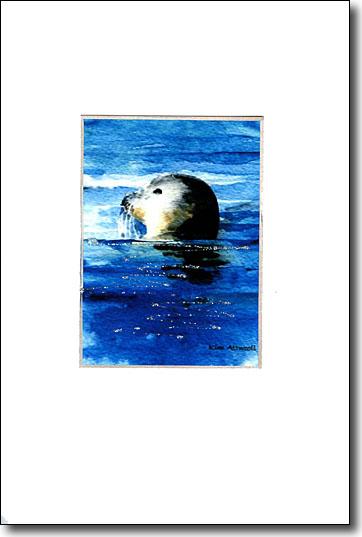 Harbor Seal image