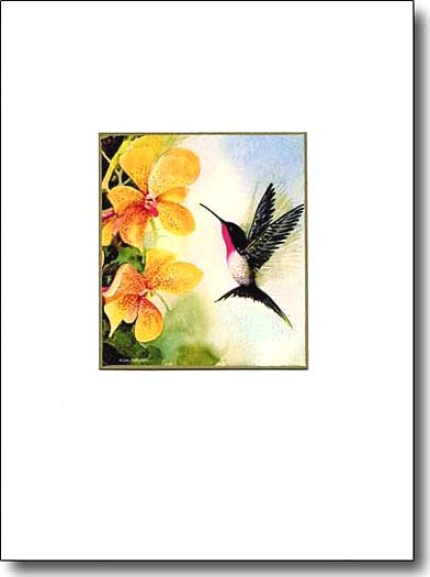 hummingbird and orchid, hummingbird image