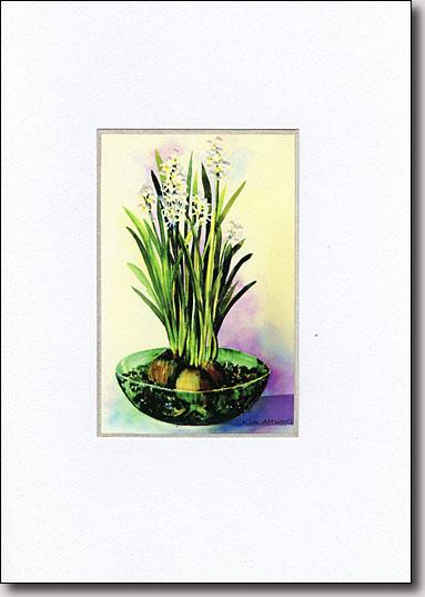 Paper Whites image