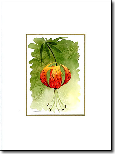 Tiger Lily image