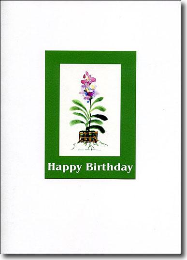 Vanda Orchid image