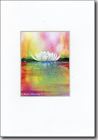 Waterlily on Pink image