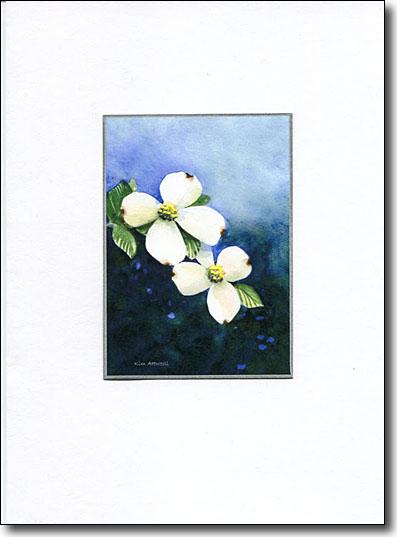 white dogwood image