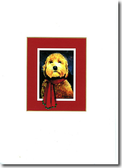 Labradoodle in Red image