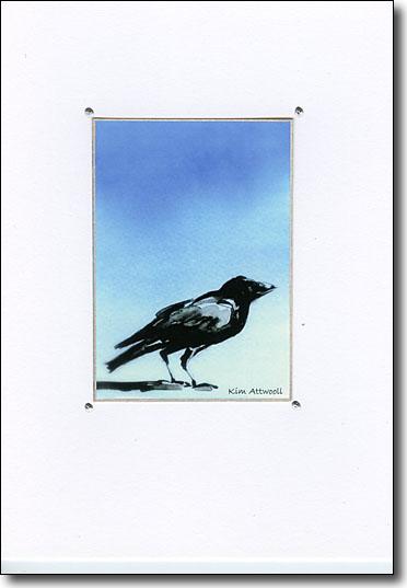 Raven on Blue image