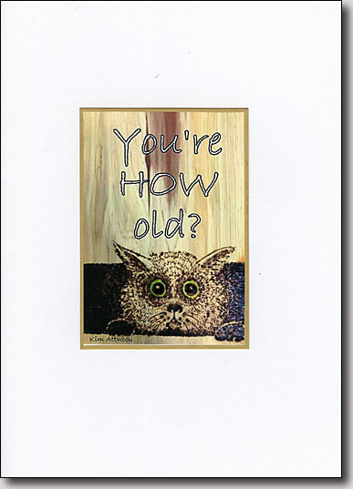 You're How Old? image