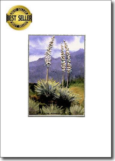 Yucca Bloom image